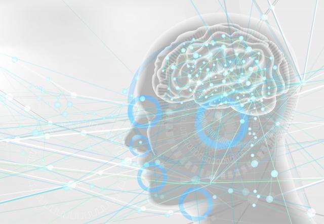 五感の伝達イメージ画像
